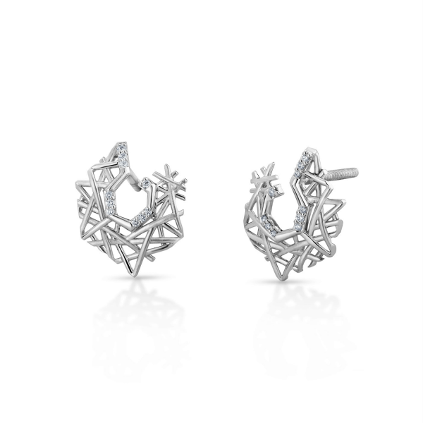 Flawless Platinum Earring for Women 20PTEEE12