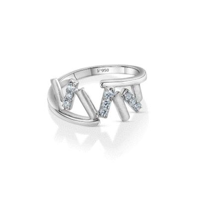 Platinum rings 1